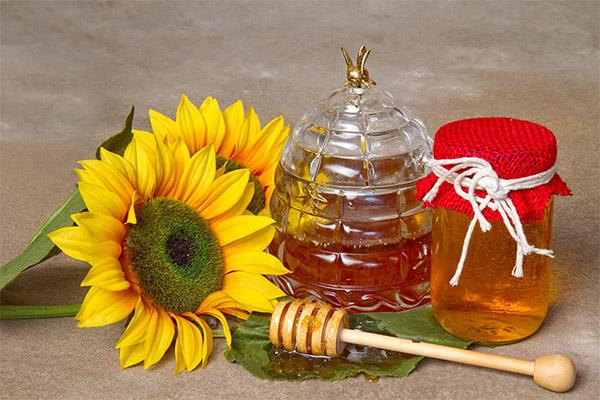 Как выбрать и хранить мед подсолнуха