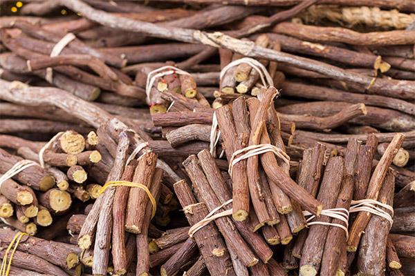 Лечебные свойства корня солодки