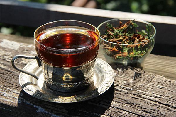 От каких заболеваний помогает чай из моркови