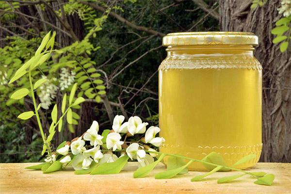 Польза и вред акациевого меда