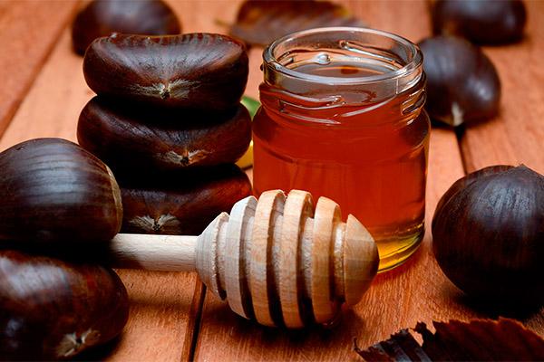 Польза и вред каштанового меда