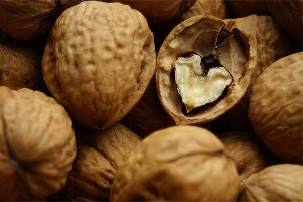 Польза и вред перегородок от грецких орехов