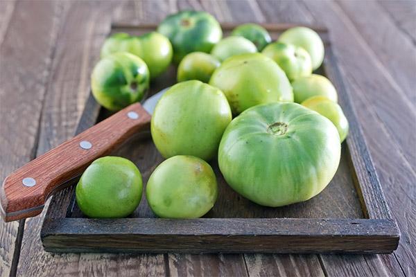 Польза и вред зеленых помидоров