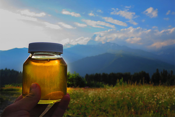 Применение горного меда в медицине