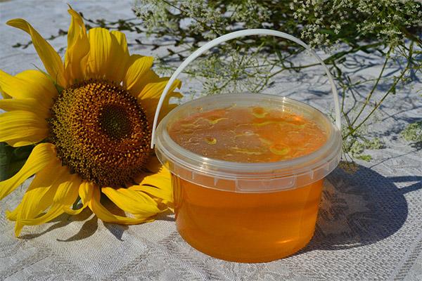 Рецепты народной медицины с медом подсолнечника