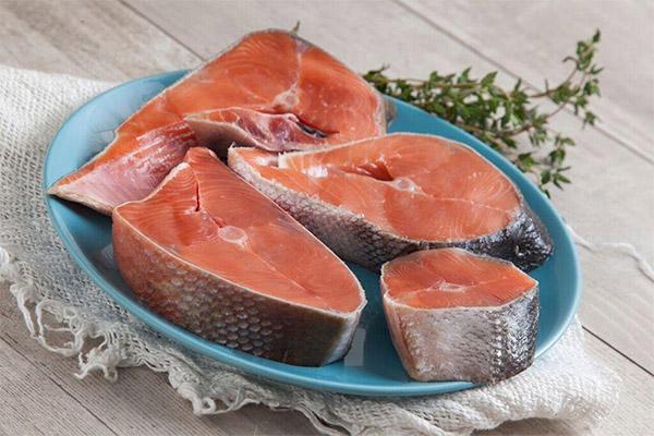 Полезные свойства рыбы кета