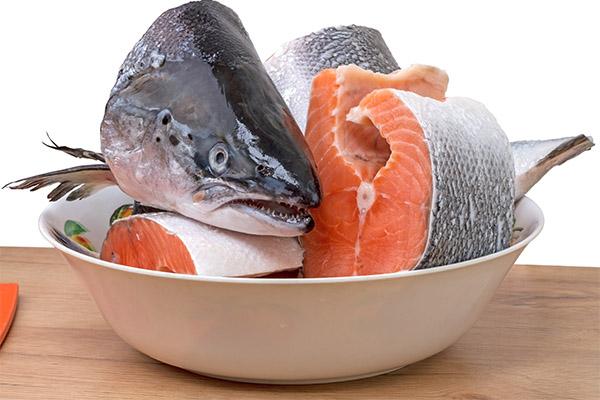 Что можно приготовить из лосося