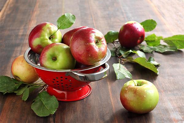 Какие фрукты можно, а какие нельзя употреблять при панкреатите