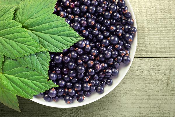 Какие ягоды можно, а какие нельзя употреблять при холецистите