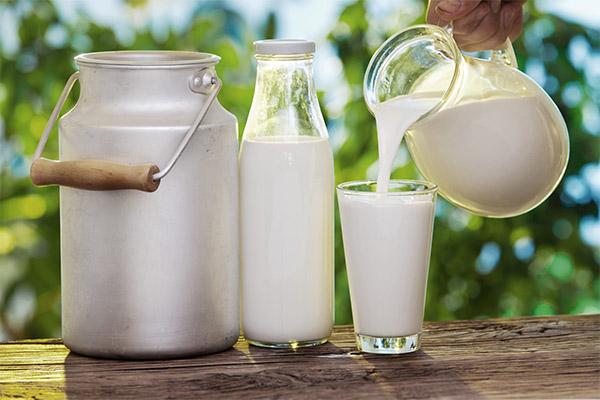 Какие кисломолочные продукты можно, а какие нельзя употреблять при запоре