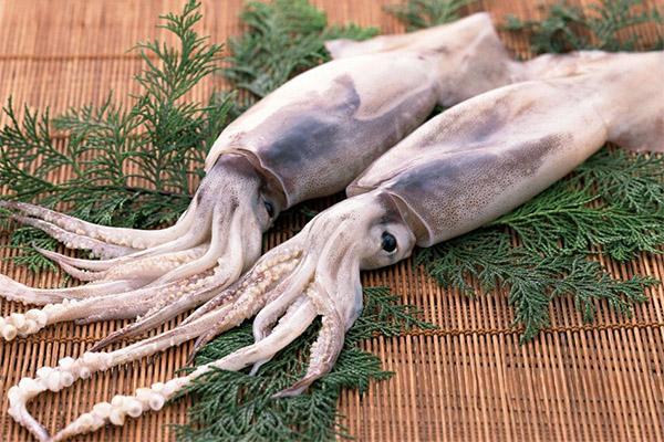 Какие морепродукты можно, а какие нельзя употреблять при колите