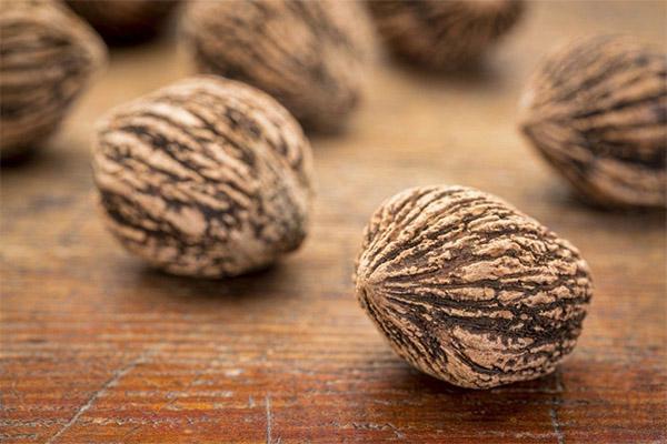 Какие орехи можно, а какие нельзя употреблять при диабете