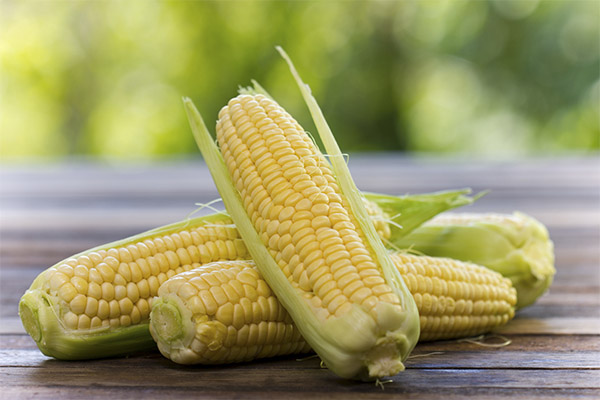 Какие овощи можно, а какие нельзя употреблять при гастрите
