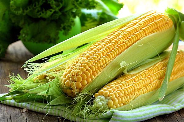 Какие овощи можно, а какие нельзя употреблять при подагре