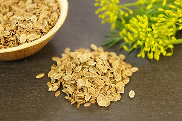 Какие семена можно, а какие нельзя употреблять при панкреатите