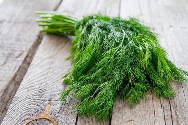 Какие травы можно, а какие нельзя употреблять при запоре