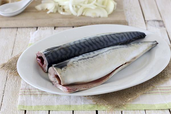 Какую рыбу и морепродукты можно, а какую нельзя употреблять при гастрите