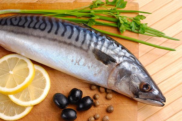 Какую рыбу и морепродукты можно, а какую нельзя употреблять при панкреатите
