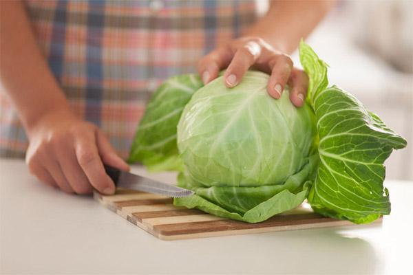 Применение капустных листов в кулинарии