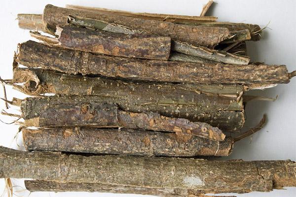 Противопоказания к применению коры осины