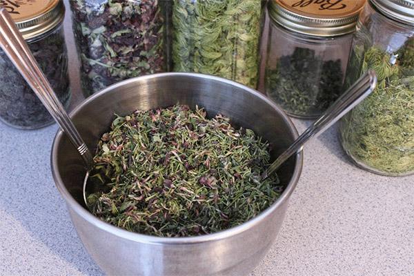 Виды целебных составов с сушеницей