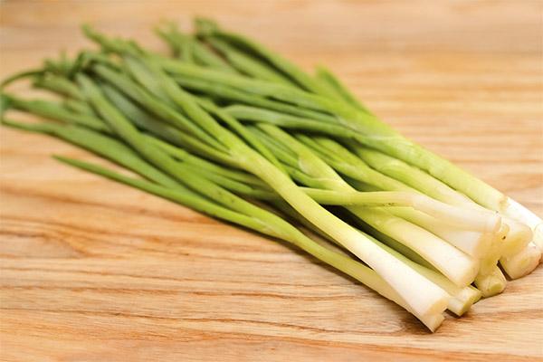 Применение лука-шалот в кулинарии