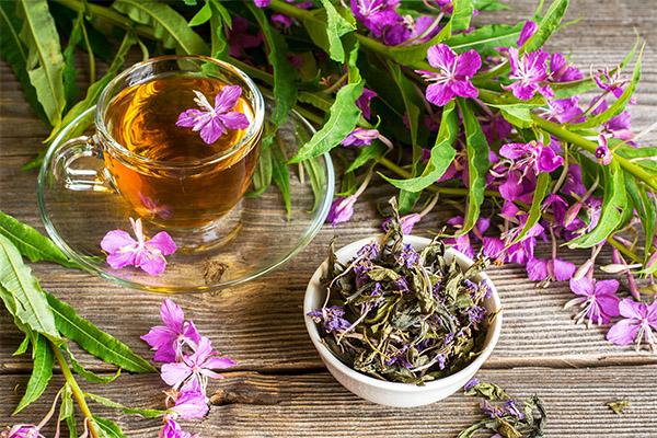 Виды целебных составов с иван-чаем