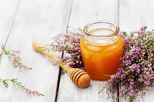 Чем полезен вересковый мед