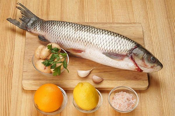 Чем полезна рыба белый амур