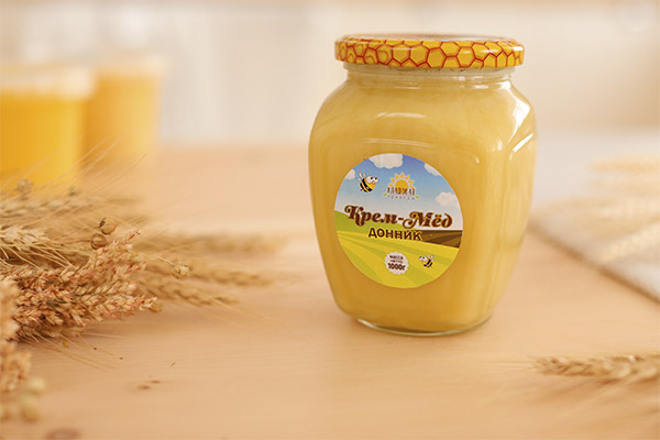 Полезные свойства донникового меда