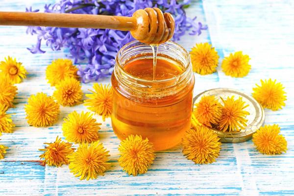 Полезные свойства одуванчикового меда