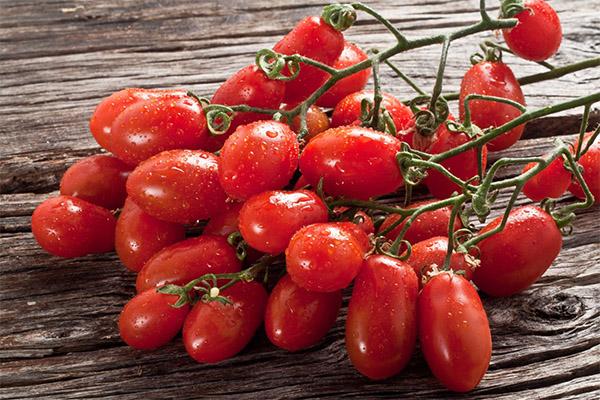 Польза и вред помидор черри