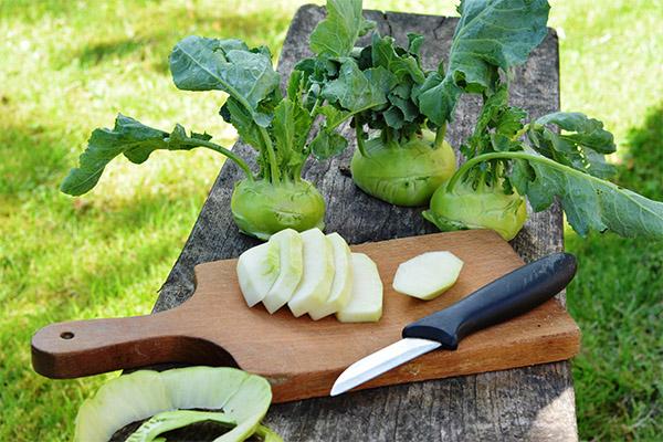 Что можно приготовить из капусты кольраби