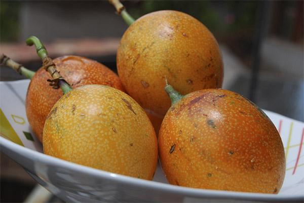 Полезные свойства фрукта гранадилла
