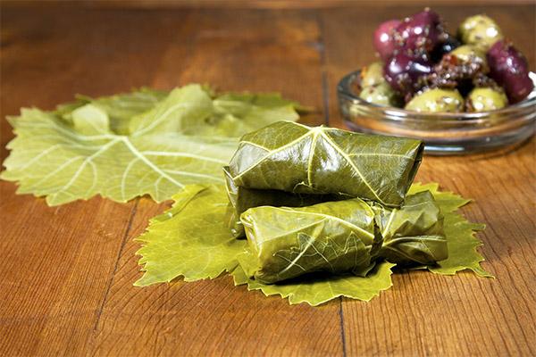 Польза и вред виноградных листьев