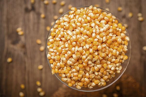 Что можно приготовить из сушеной кукурузы