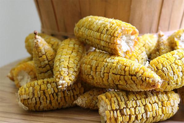 Как правильно сушить кукурузу